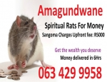 Money Spells Caster | UK | USA +27634299958 Germany south africa spiritual rats amagundwane sangoma